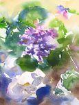 Feuilles et fleurs mouillées-Premier-Prix Jasmin-