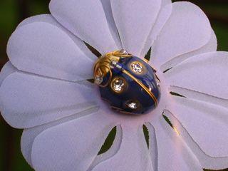 coffret-eau-de-parfum-lolita-lempicka-pin's-coccinelle-Lolita-Lempicka-support-fleur-design-michel-charrier