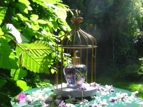 gloriette-du-jardin-de-Lolita- premier-parfum-eau-de-parfum-concept-design-M-CharrierIMG_0162