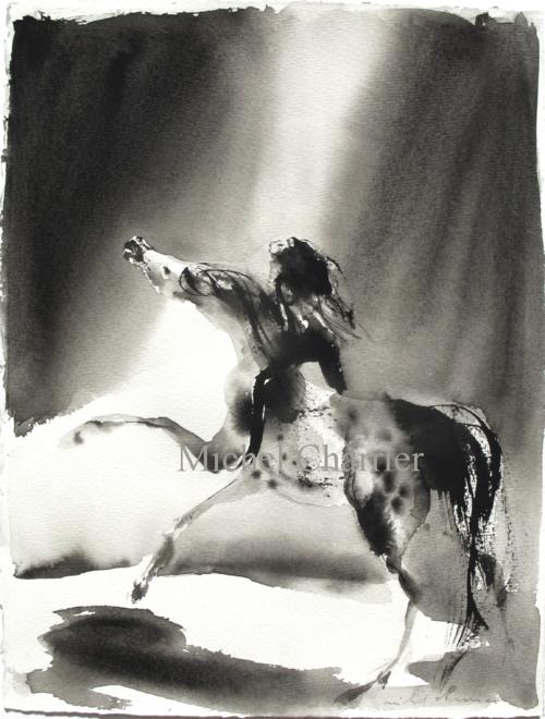 Cheval et cavalière dans la lumière Michel Charrier