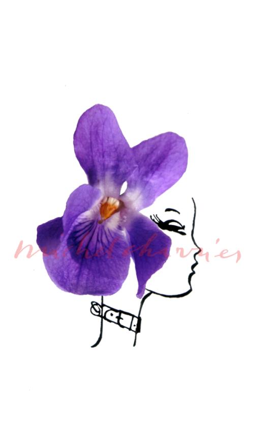Violeta seule pour un parfum-dessinmodebeauté parfum-artiste Michel Charrier dessin parfum-illustration fragrance senteur parfum