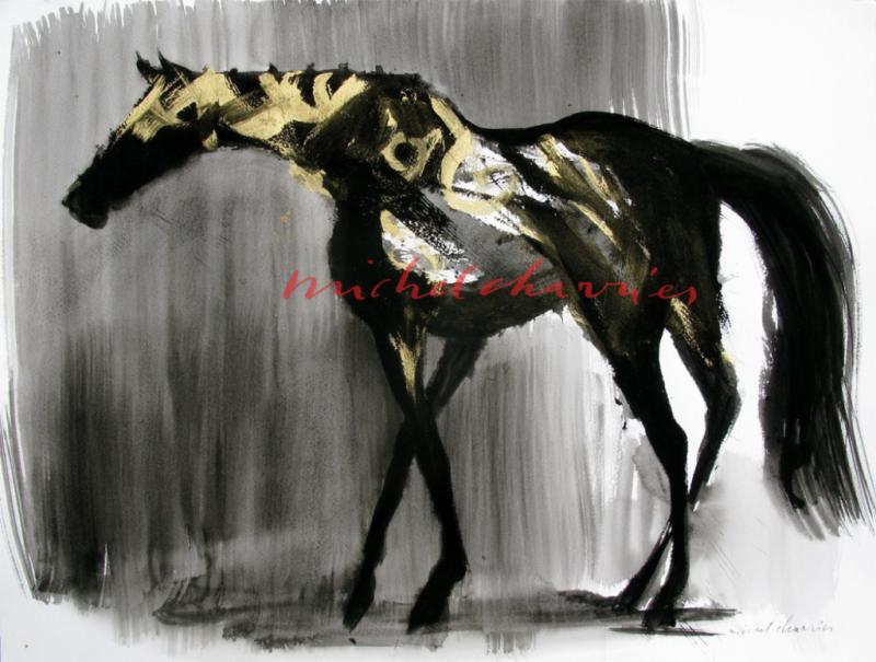 Golden rain-cheval pangaré d'or-michel charrier-robe pangaré-
